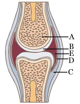 fáj a kezek és az ujjak ízületei nem hagyományos módszerek a térd ízületi gyulladás kezelésére