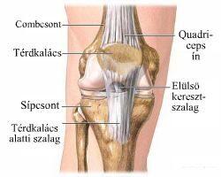 artróziskezelő gépek áttekintése