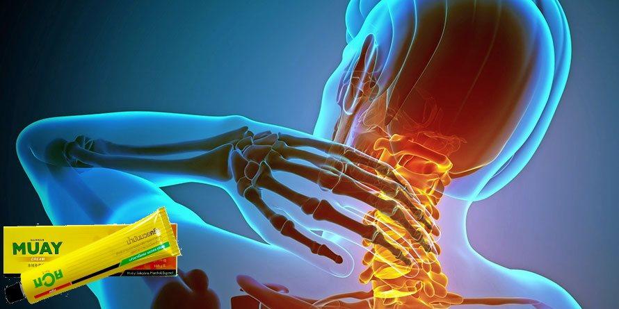 kenőcs a gerinc csontritkulásának kezelésére folyamatosan fájó fájdalom a vállízületben