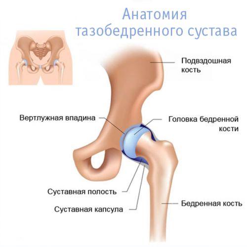 artrózis kezelés otthoni körülmények között csípőízület csontozatának kezelése