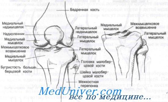 térd artrózis a sportolókban az időleges ízületek deformáló artrózisa