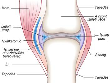 stepper és artrosis kezelés