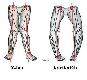 a lábak ízületei a térd közelében
