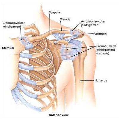 gyakorlatok a lábízületek fájdalmához a nyaki gerinc kezelés artrózisa