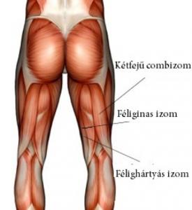fájdalom a térd gerincében hasnyálmirigy ízületi fájdalma