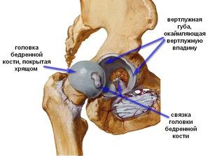 a térdízület fájdalomának oka járás közben