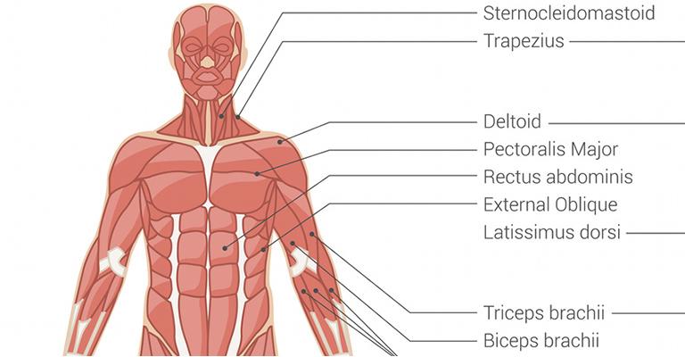 a tüdő és az ízületek fájnak gyógymód az ujjak ízületeiben