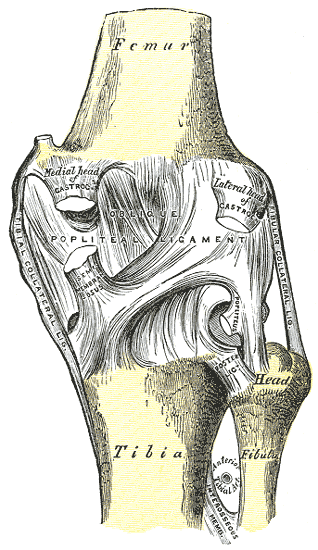 fájdalom és duzzanat a lábízület vállízület artrodesis kezelés