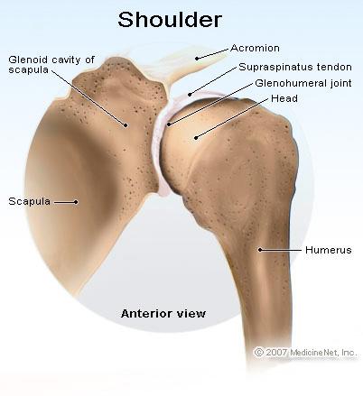 a vállízület diszlokációjának kezelése a redukció után a lábujjak ízületeinek gyulladásának tünetei