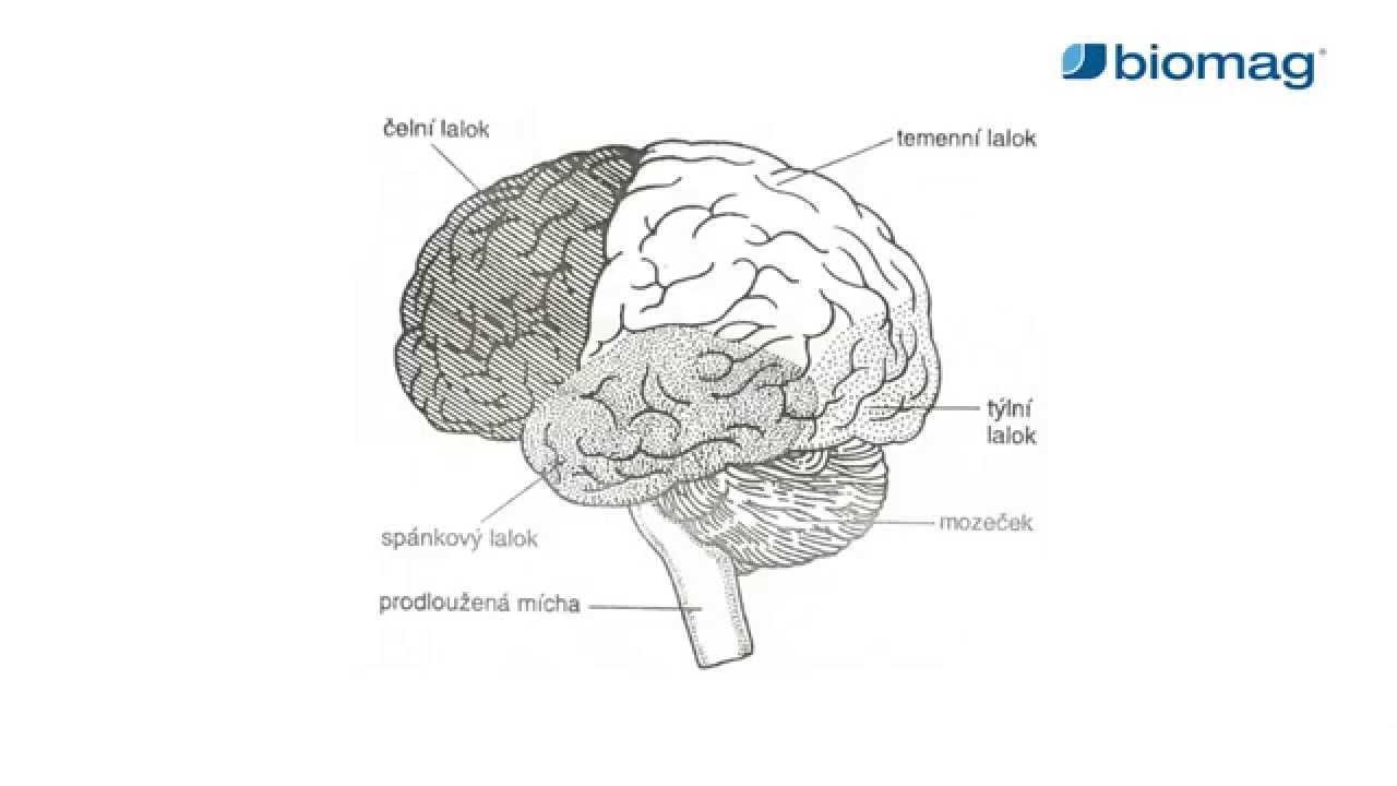 ízületi fájdalom és agyi ödéma