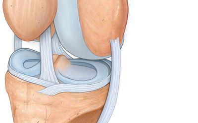 ízületi fájdalom a láb felett felülről az ízület deformációja deformáló artrózissal jár