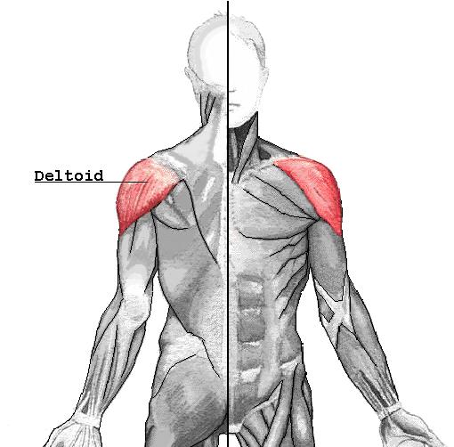 a térdízület mindkét meniszciájának degeneratív károsodása fájó fájdalom a lábujjak ízületeiben