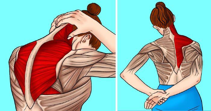 hogyan lehet enyhíteni a jobb vállízület fájdalmát