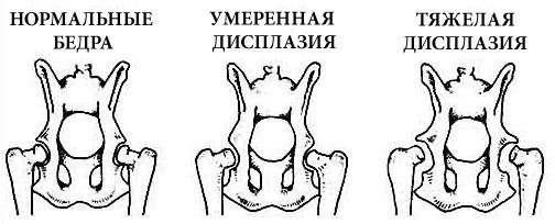 fájó ízületi fájdalom egyszerű milyen kenőcs az ízületi fájdalmak kezelésére