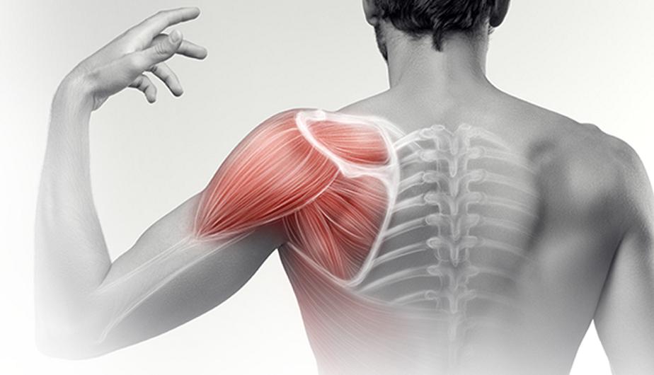 izom- és csontízületek fájnak rángatózik és fáj a váll