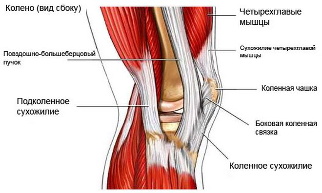 ortózisok artrózis kezelésére ízületi osteochondrozis fáj