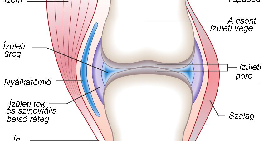 hogyan lehet kezelni a térd limfosztatist forró ízületek kezelése